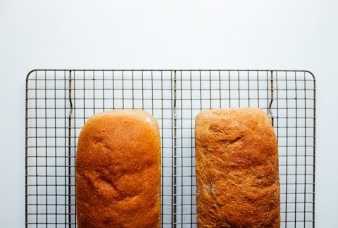 Whole wheat sandwich bread recipe by the wood and spoon blog by kate wood. This is a fluffy, healthy, 100% whole wheat sandwich bread that is fluffy and mild tasting. This is a homemade bread good for kids to eat. Makes great toast and sandwiches. Made soft with vital wheat germ. Naturally sweetened with honey. Find the recipe on thewoodandspoon.com